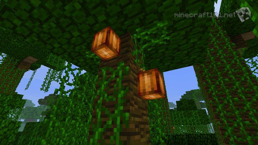 minecraft why wont my jungle trees grow