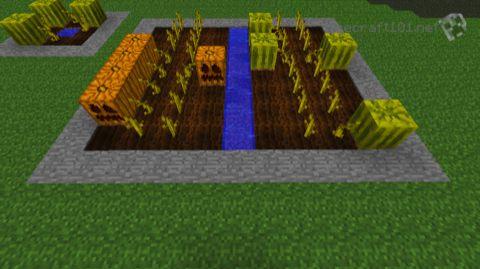 pumpkin patch minecraft server