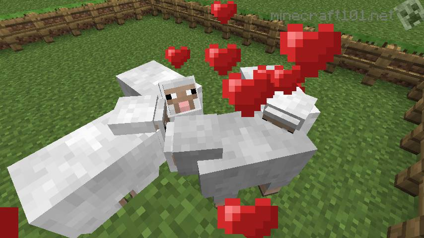 Image of: Animal Farm Piggy Love In Minecraft Minecraft 101 Farming Sheep Cows And Pigs Minecraft 101
