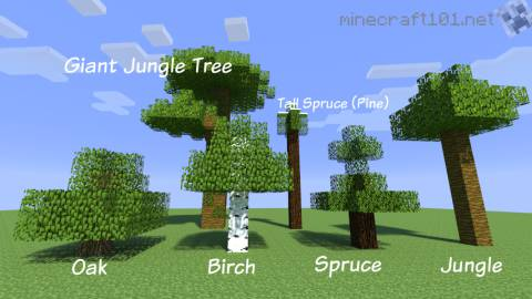 Farming Trees Minecraft 101