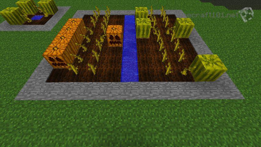 pumpkin farm minecraft