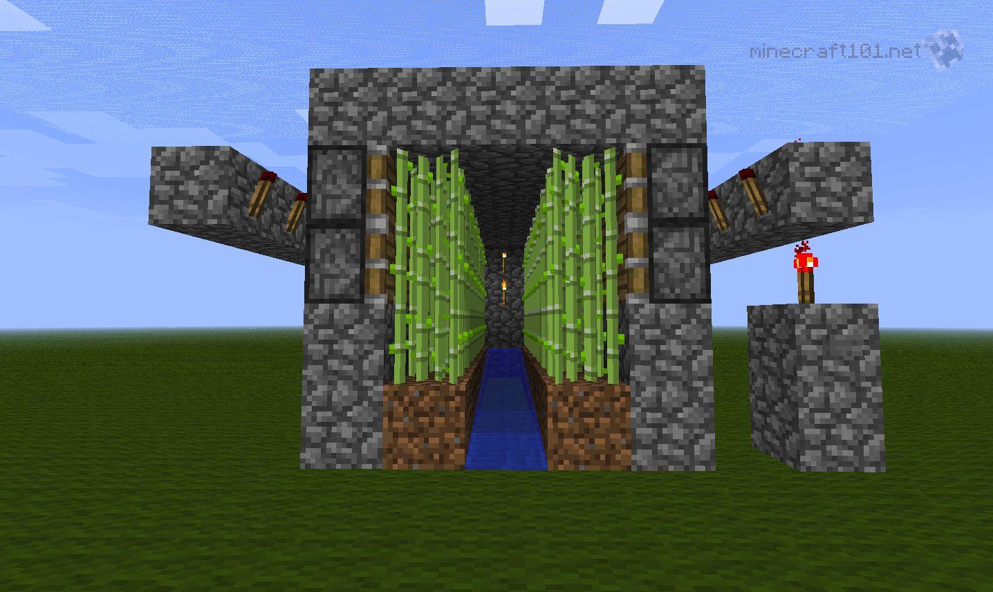 Farming Sugar Cane - Minecraft 101