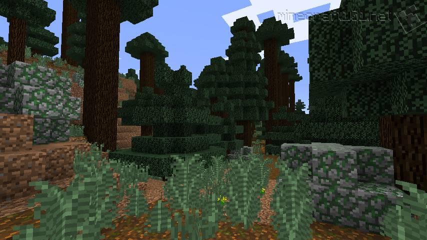 Minecraft Biomes | Minecraft 101