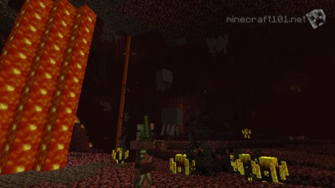 Welcome to The Nether