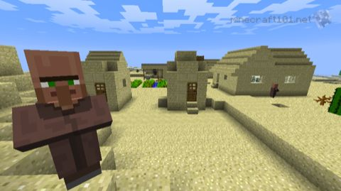 Village in minecraft