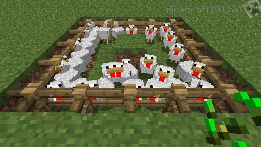 Image of: Build Simple Chicken Farm Minecraft 101 Basic Chicken Farm Tutorial Minecraft 101