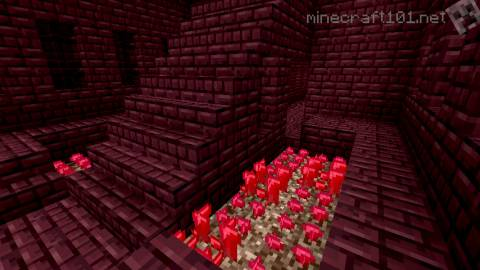 The Nether Minecraft 101